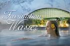 Erlebnis-Saunanacht 'Faszination Wasser'